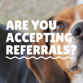 Are You Accepting Referrals?